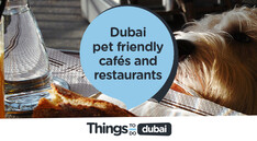 Dubai pet friendly cafés and restaurants