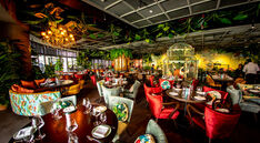 MamaZonia: A tropical escape in the heart of the city!