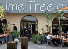 Restaurant The Lime Tree Cafe And Kitchen Dubai Picture